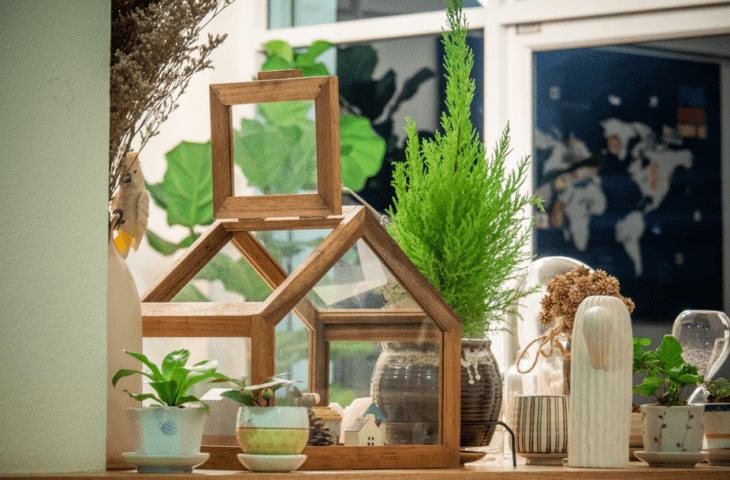 Plants enhance learning
